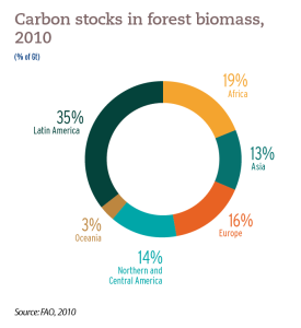 Carbon stocks in forest biomass, 2010