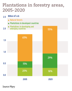 Plantations in forestry areas, 2005-2020