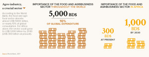 Importance of the food and agribusiness sector throughout the world