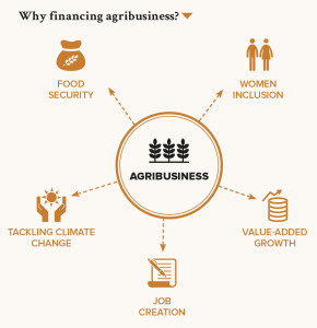 Why financing agribusiness?