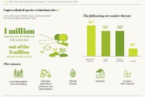 Unprecedented species extinction rates