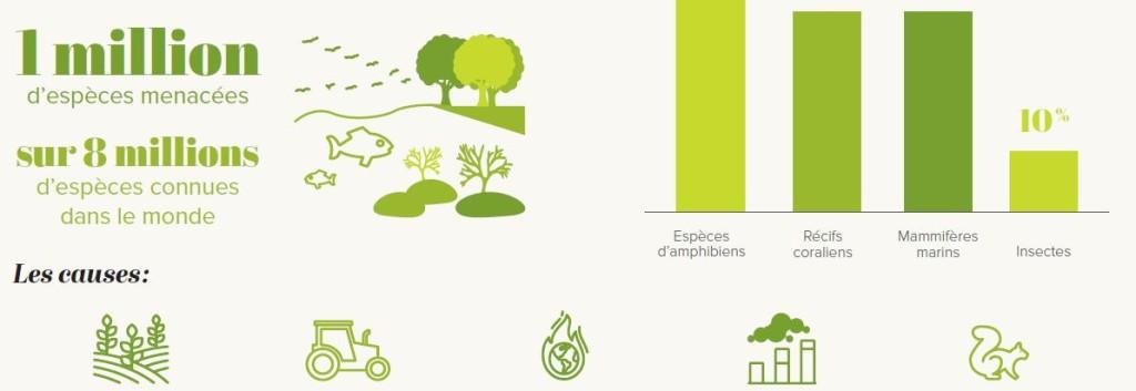 aller a Biodiversity Loss: An Alarming Report – Key figures