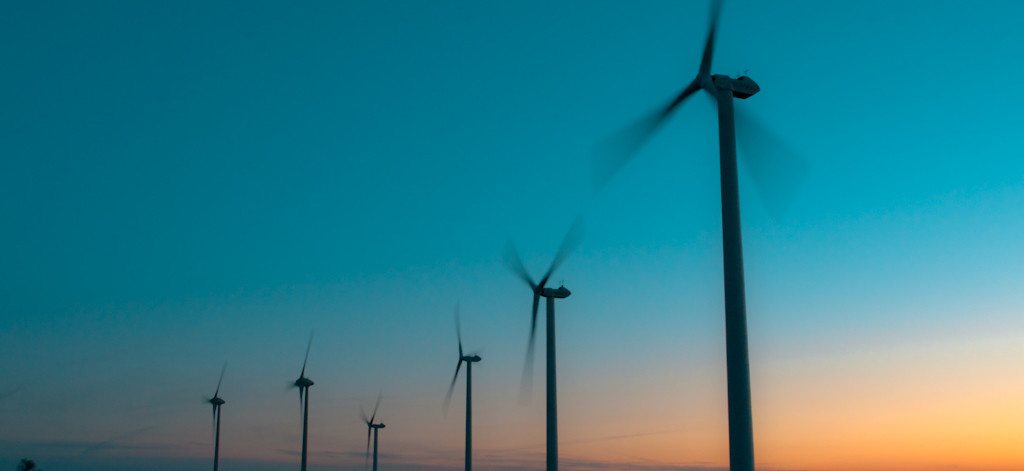 aller a Recommendations for integrating biodiversity into the wind energy sector in emerging market countries