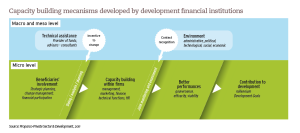 Capacity building mecanisms developed by development financial institutions