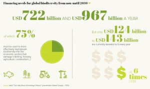 Financing needs for global biodiversity from now until 2030