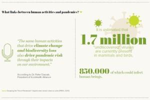 What links between human activities and pandemics?